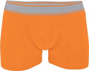 Boxer oranje